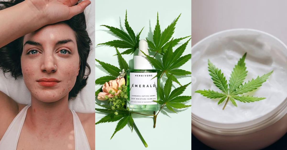 大麻也能當保養?網路超夯「大麻籽油」紅什麼?竟是美容專家讚不絕口的抗痘救星