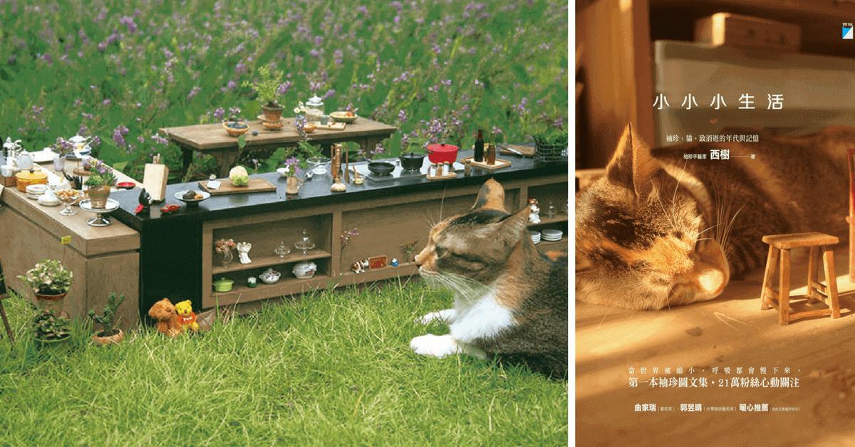 「當世界被縮小,呼吸也慢下來」,冬日最療癒的書 貓咪與懷舊袖珍的相遇,溫暖文字喚醒妳我珍藏多年的記憶!