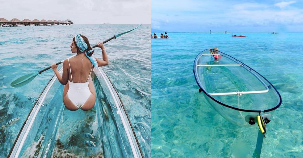 不用下水就把海底盡收眼底!紅遍歐美的夢幻「透明獨木舟」墾丁也玩得到