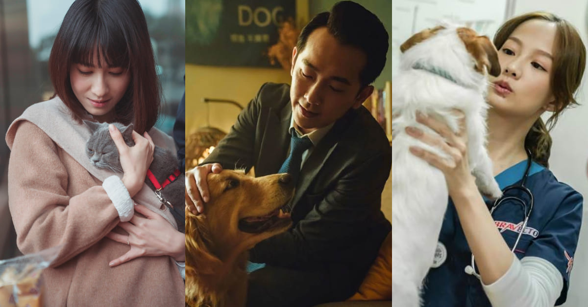 台灣首部「寵物溝通」療癒劇!簡嫚書、連俞涵《黑喵知情》,攜手《與惡》帥醫生寵愛毛孩!