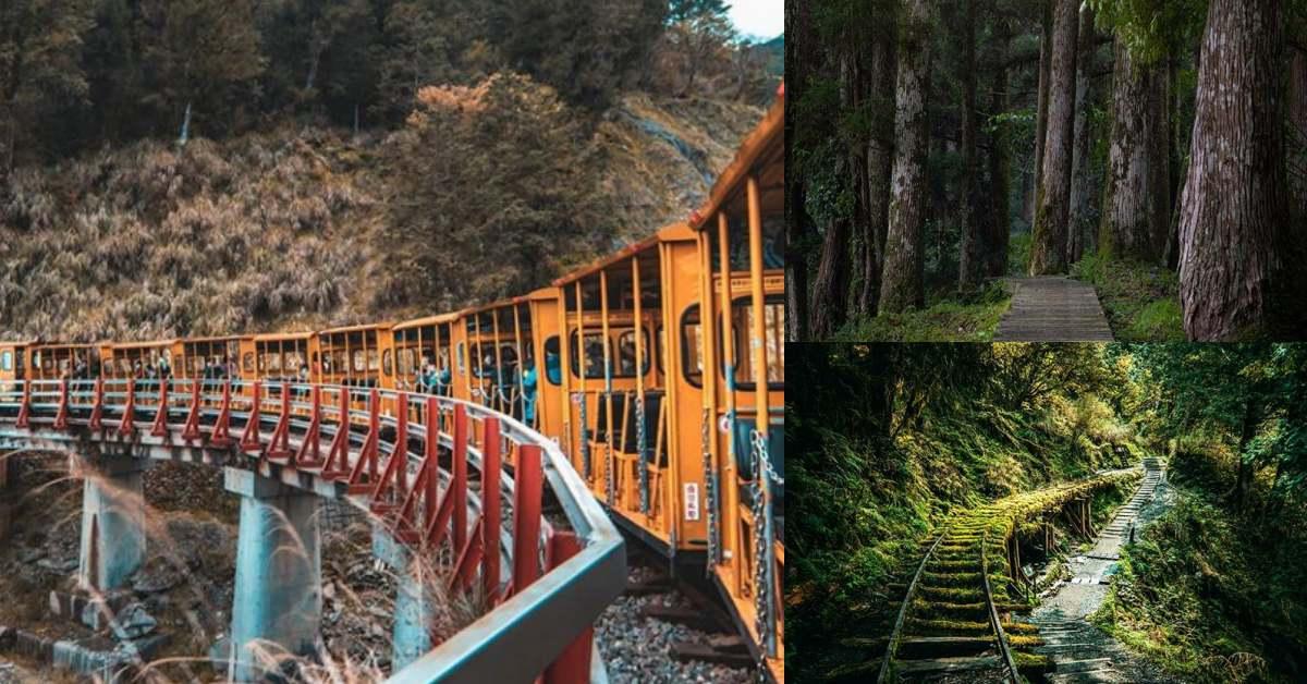 宜蘭「太平山蹦蹦車」再度啟航!車站、票價、時刻表一次公開,森林迷已開始失去理智