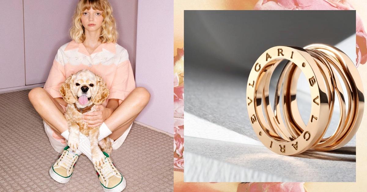 2020年義大利「最有價值品牌」,Gucci逆勢成長26%狠甩法拉利!這9個精品也有份!