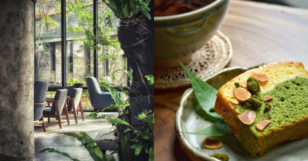 竹北下午茶推薦「半畝院子」,城市中的秘境森林,在洞穴般的「泥窩」品一碗好茶