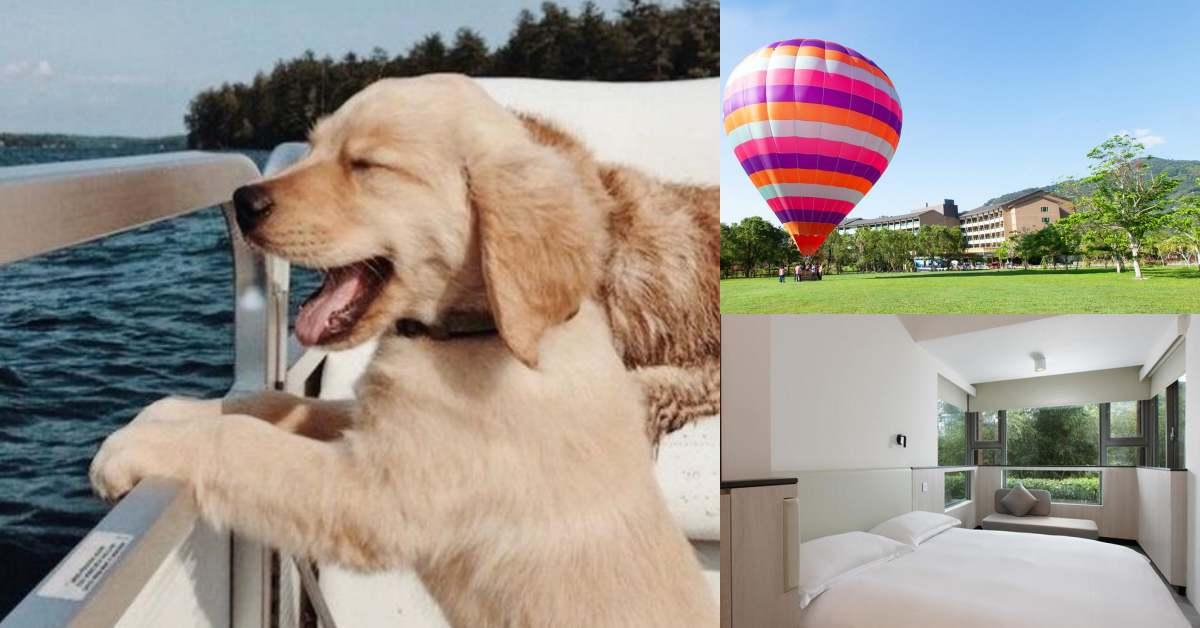 寵物友善飯店Top 5!「大板根森林溫泉酒店」有芬多精,「鹿鳴溫泉酒店」看熱氣球,真是好狗命!