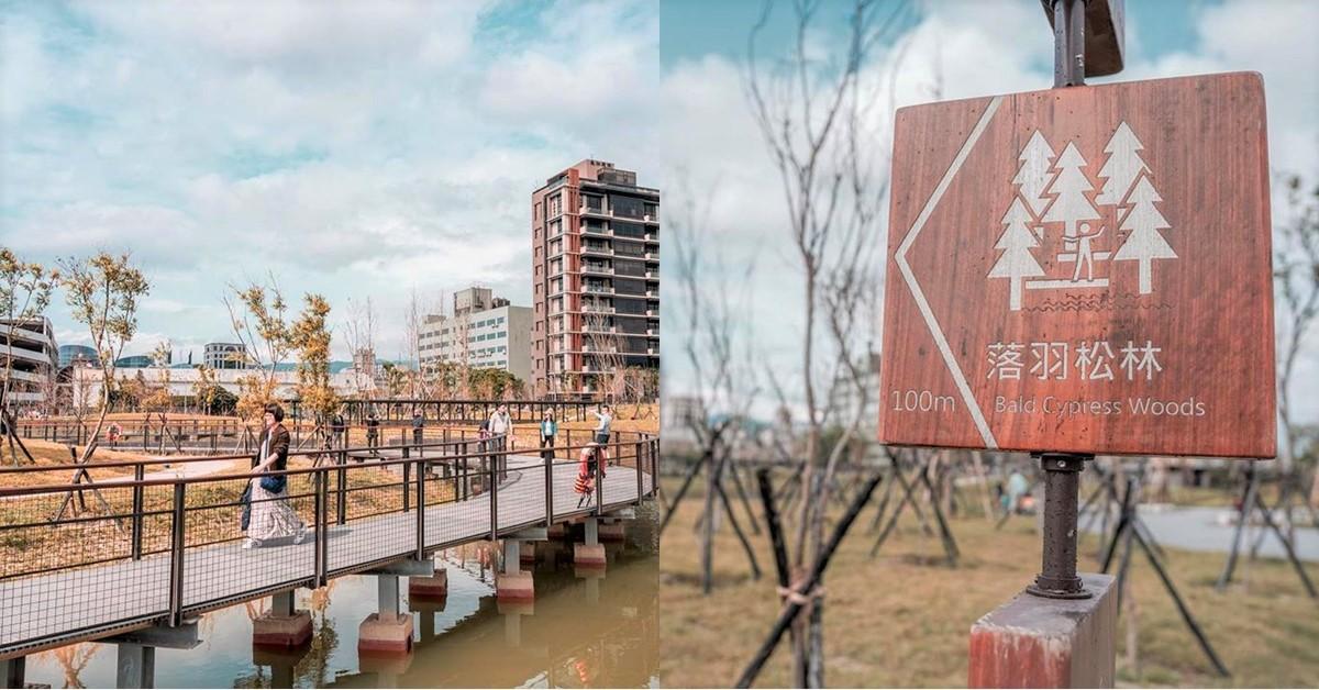 台北竟然也有落羽松!IG熱搜新景點「南港新新公園」,週末相約姐妹拍出逆天美照吧!