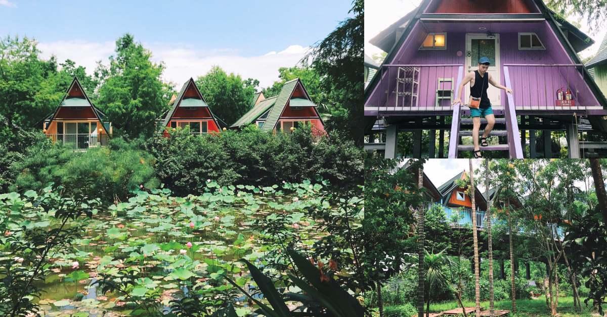宜蘭「風箏小木屋」懸空隱身於樹林中,旁邊是冬山河,遠看是抹茶山,誰還要去露營