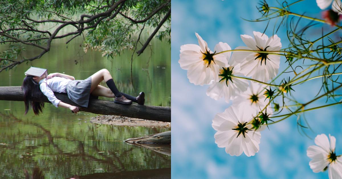 想睡覺提神靠4招!專家建議多吃「青」、「酸」食物養肝,由裡到外遠離「春困」