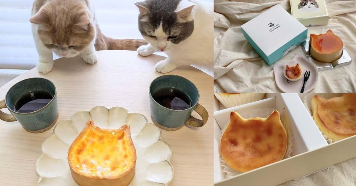 日本「Neko Neko 貓貓起司蛋糕」進軍台北信義,招牌「布里貓起司蛋糕」不用去東京就吃得到!