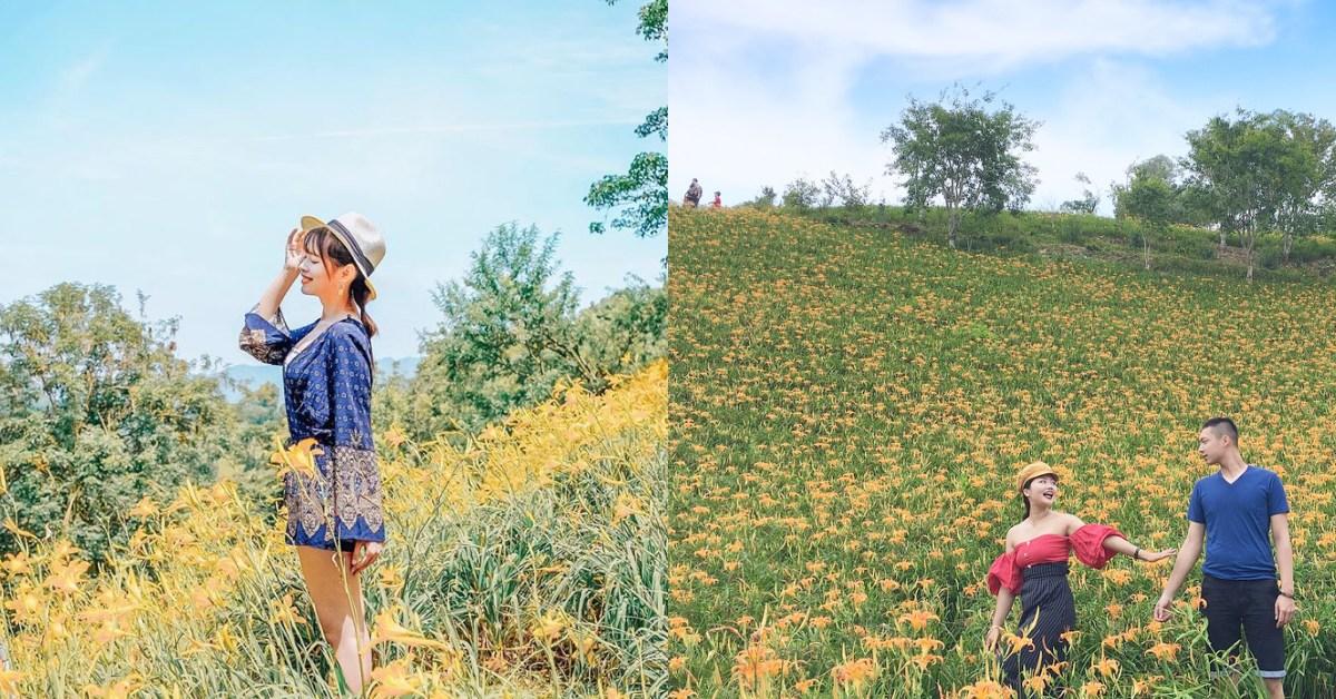 全台金針花都開好了!特搜北、中、南6處賞花景點,安排個週末旅程吧!