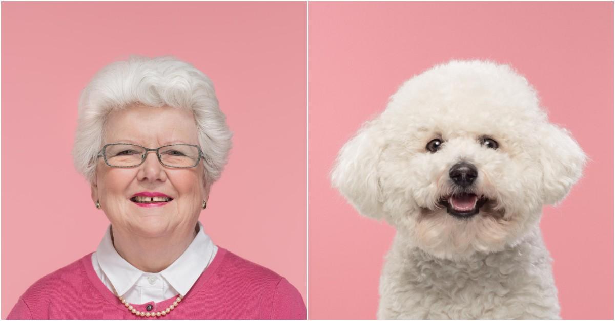 什麼樣的人養什麼樣的狗!人狗大頭照對比,這些飼主與毛小孩真的超過87%相像啦~