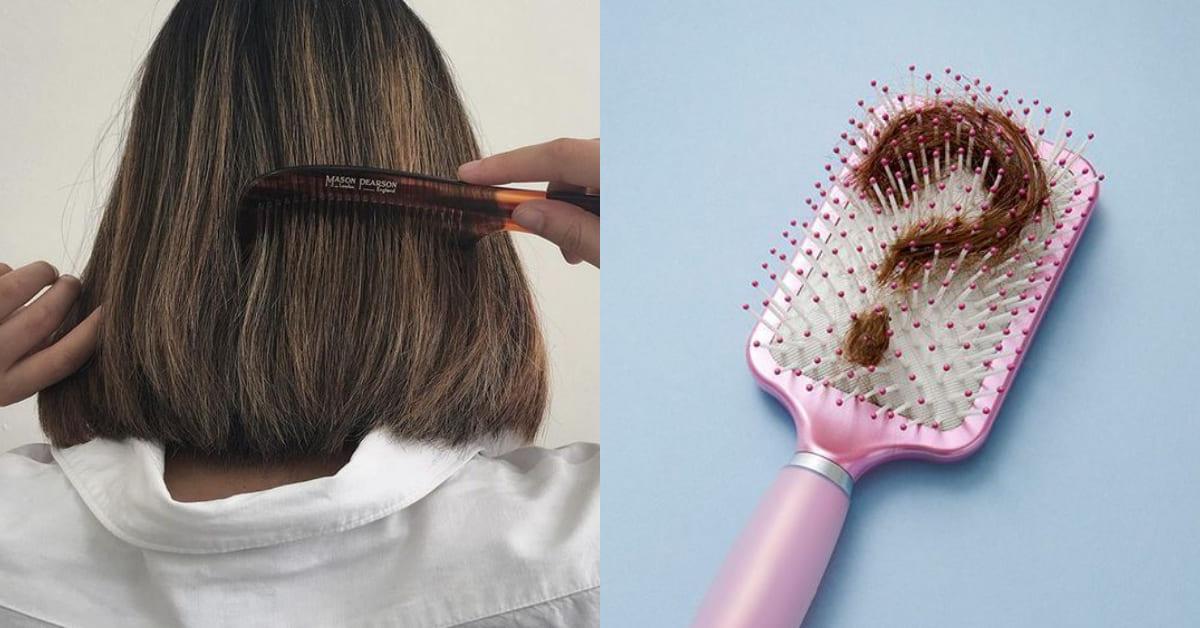 """梳頭正確方式很重要!專家警告""""3不2要""""原則,這樣梳頭髮不長反而掉更多"""