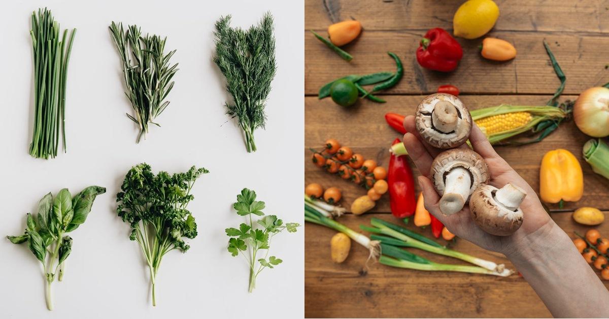 超過35歲美貌、體力都回不去了?這10種「逆齡保養食物」讓你保持健康和青春