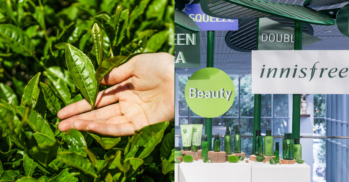 不要小看「綠茶」,除了有營養價值外,用在護膚保養上更有5大優點!