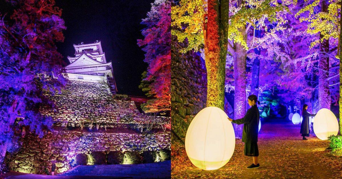 teamLab又來了!「高知城光之祭」400年古蹟變不夜城,老牆、古徑一秒成魔幻畫布