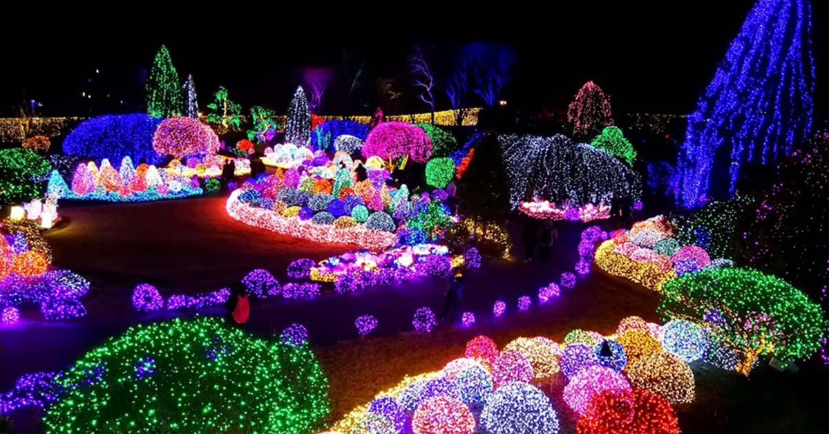 【韓國】韓國冬季旅行體驗:華麗燈光慶典、採草莓、聖誕及跨年活動、冰釣及露天溫泉體驗!