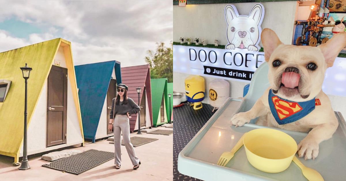 苗栗美食推薦「Doo Coffee」,山中秘境貨櫃玻璃屋,可愛店狗法鬥陪你一起用餐