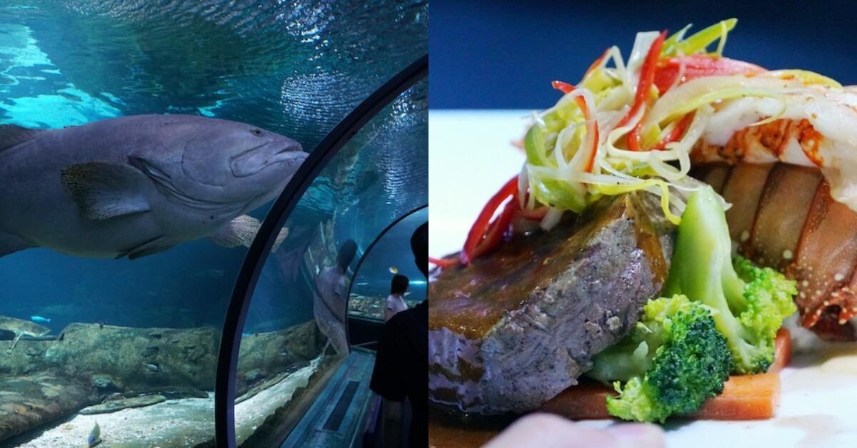 【傑力話家常專欄】Underwater World 水中用餐的浪漫情懷