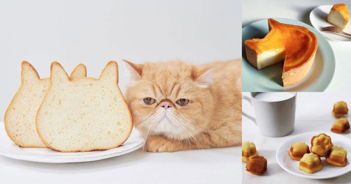 日本「貓咪生吐司」即將來台,超人氣「貓臉吐司」、貓掌瑪德蓮,貓奴IG無法忍啦!