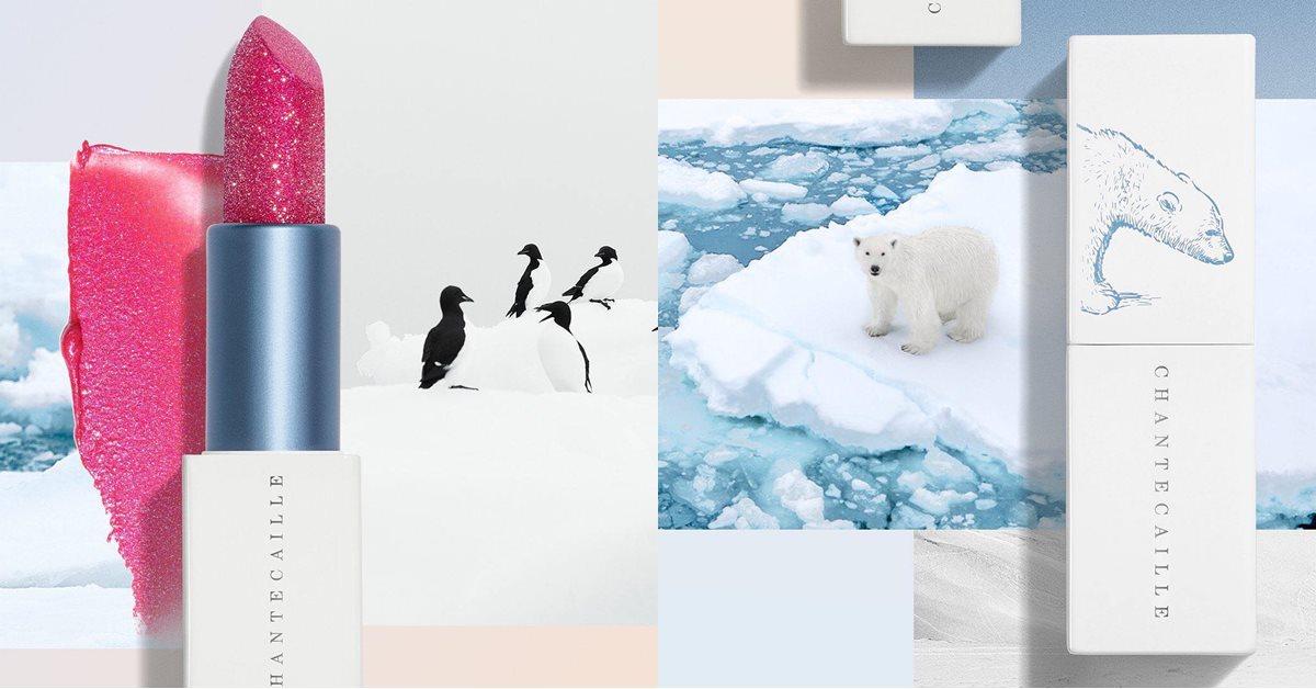 買唇膏還能救北極熊!香緹卡超美星光唇彩幫你變漂亮同時愛地球