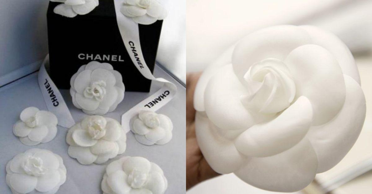 【10Why個為什麼】Chanel包包、美妝到粗毛呢外套都有它!撐起時尚王國的「山茶花」原來藏有這10個故事