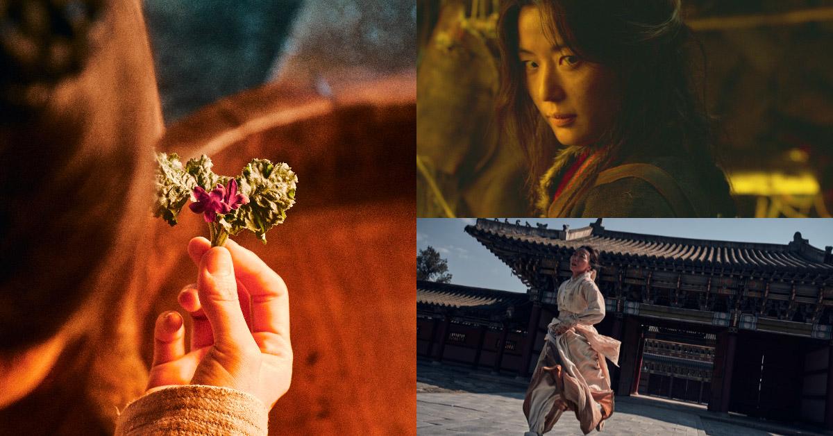 全智賢的身分即將公開!第三季《屍戰朝鮮:雅信傳》Netflix強勢上線,生死草的秘密將揭曉!