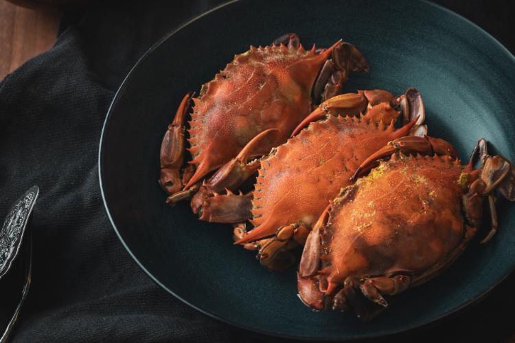 吃螃蟹5大禁忌要注意!「不能配茶吃」竟有根據?這幾種人要少吃,加碼「電鍋蒸蟹」簡單3步驟即上桌!