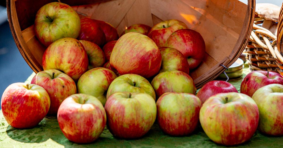 蘋果減肥有效嗎?6大真相破除迷思:統計學表示「醫生不會遠離你」,打蠟、農藥建議3步驟清洗!