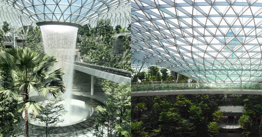 新加坡新時尚地標「星耀樟宜」!全球最高室內瀑布、熱帶雨林在這裡