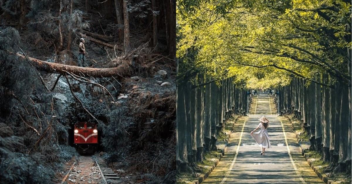 阿里山鐵路「驚悚仙境」再現!2020盤點嘉義10大「自然系美景」IG打卡景點,隱藏版鐵路決不虛此行!