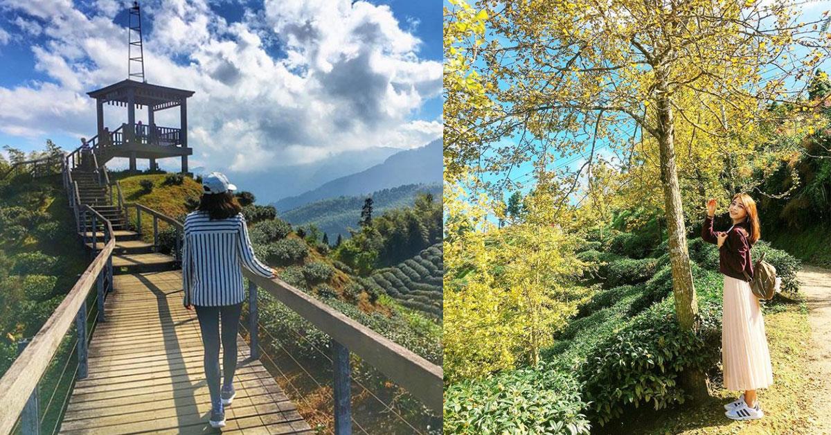 美到不用修片!台灣「5條秘境步道」不開濾鏡也能拍出超狂美照
