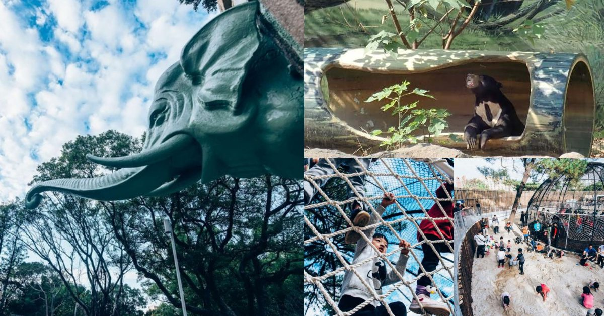 新竹新景點!《新竹動物園》打造沒有籠子的動物園,6大必逛亮點總整理