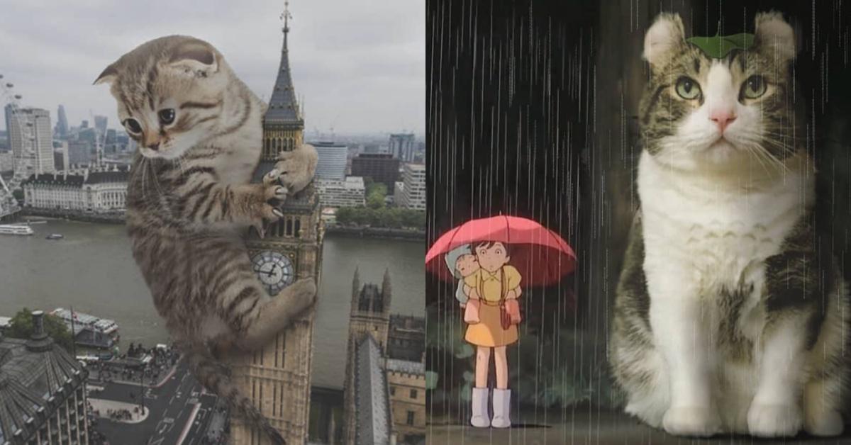 奴才們跪安吧~喵皇統治的時代來臨!看藝術家用P圖打造巨型貓星人的異想世界