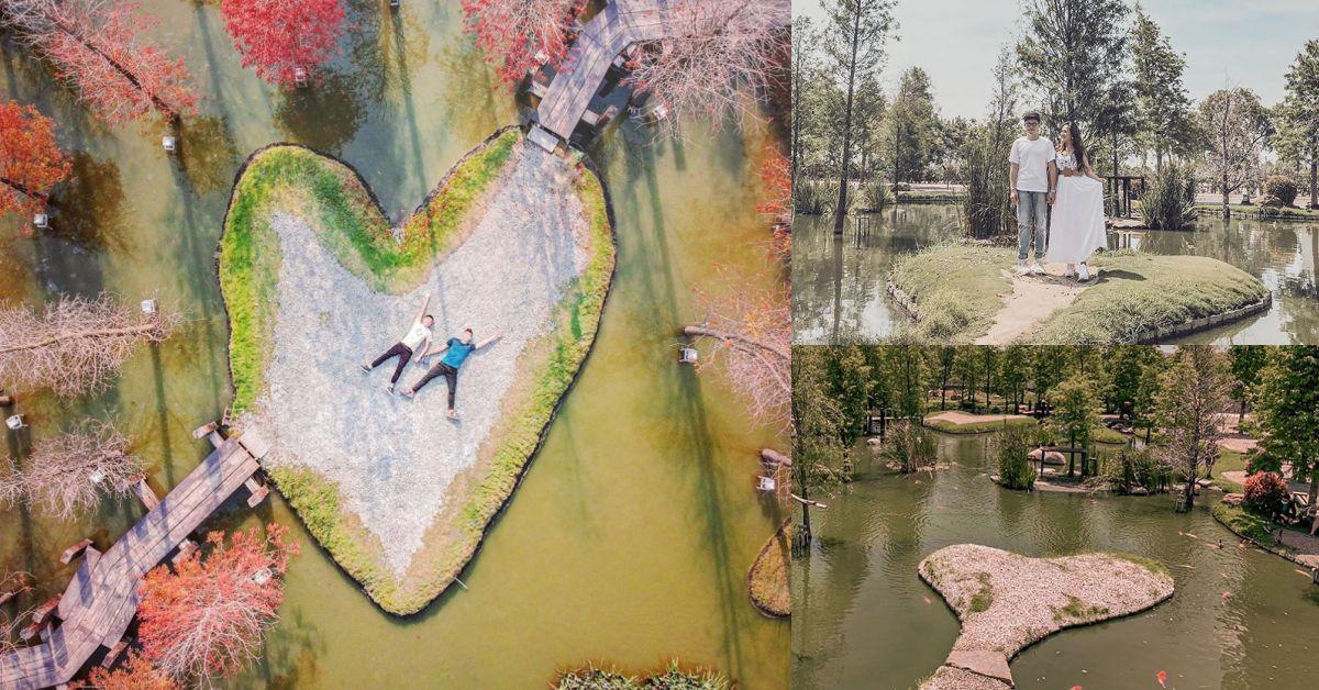 雲林爆紅新景點「湖上愛心島」,整個人被巨大落羽松包圍,堪稱台版兼六園!