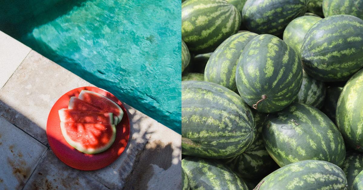 夏天吃西瓜消暑但別拉肚子!4件事你要知道:用「保鮮膜」可能更容易滋生細菌、「這些人」建議少吃為妙!