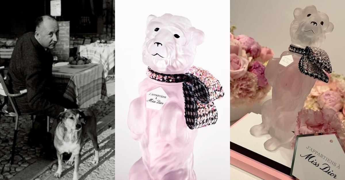 Dior香水可愛回歸!迪奧先生愛犬Bobby再復活,風靡全球73年銷售巔峰全靠迷人花香