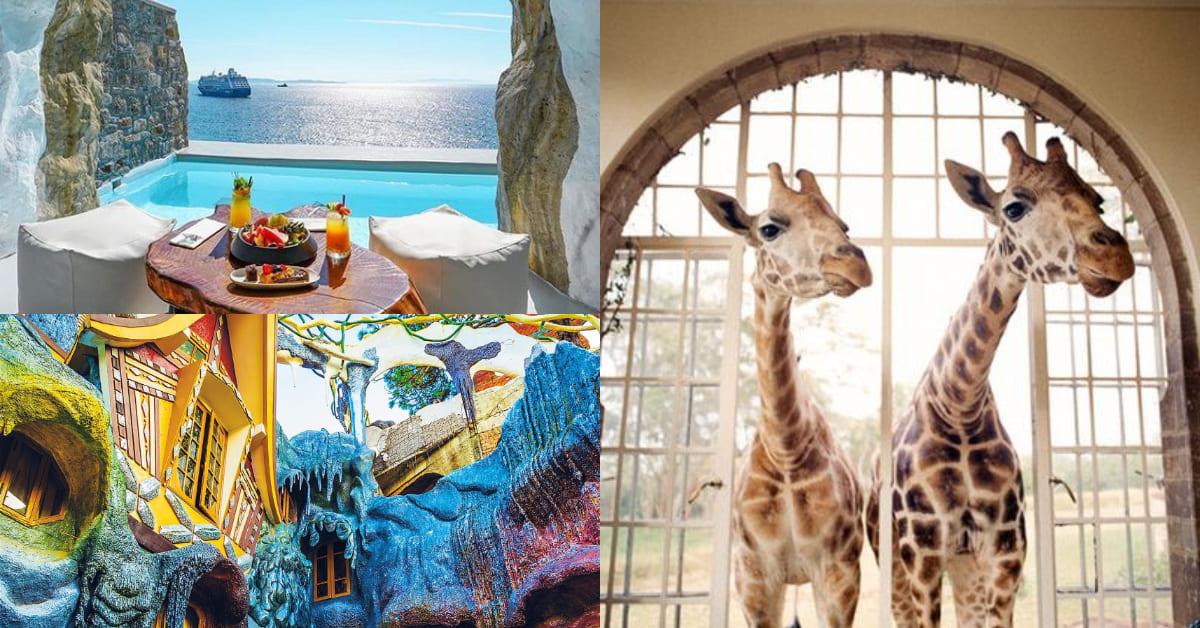 與長頸鹿吃早餐好夢幻!全球5大浮誇住宿推薦,讓你當上童話故事裡的女主角