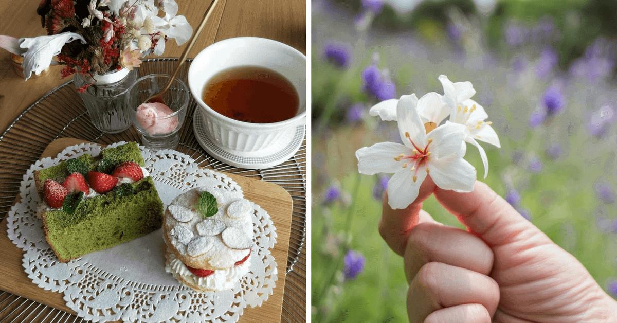 今年母親節來點不一樣的! 野餐、賞桐花…6個與媽媽約會的提案