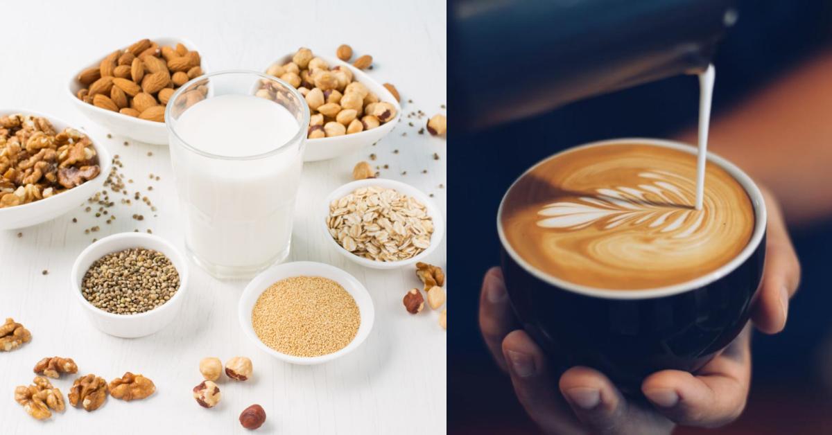 喝牛奶長痘痘怎麼辦?植物奶新趨勢,低脂低碳水好處多,這款最適合「減重族」