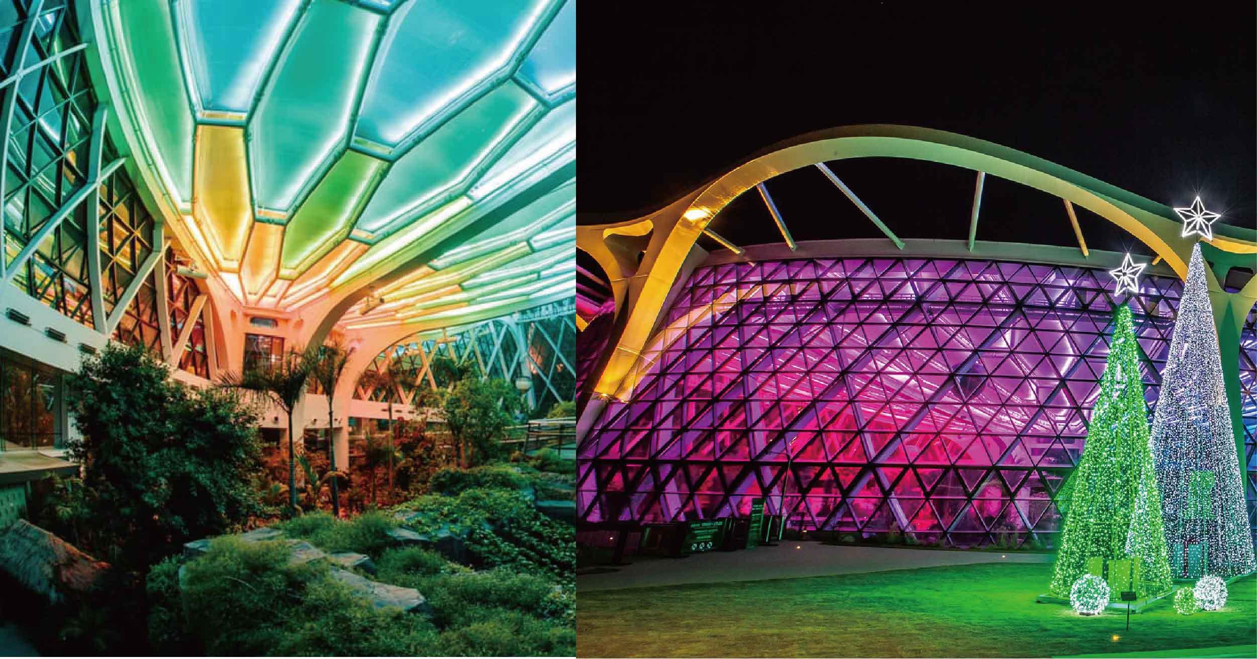 韓國首爾最大「玻璃植物園」夜晚更迷人!8月開始參觀,進入256色LED燈魔幻世界