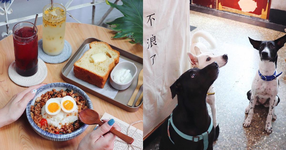 台南寵物友善餐廳Top5!美味早午餐、 招牌「寵物餐」樣樣有,假日跟毛小孩約會去吧!-2