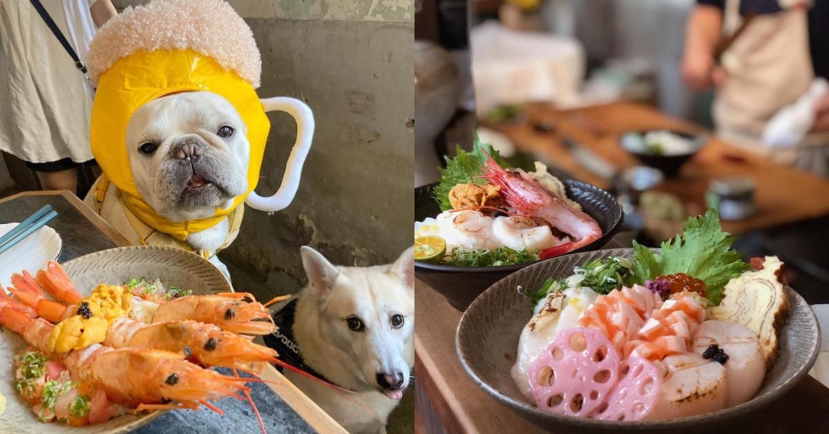 台南寵物友善餐廳Top5!美味早午餐、 招牌「寵物餐」樣樣有,假日跟毛小孩約會去吧!-7