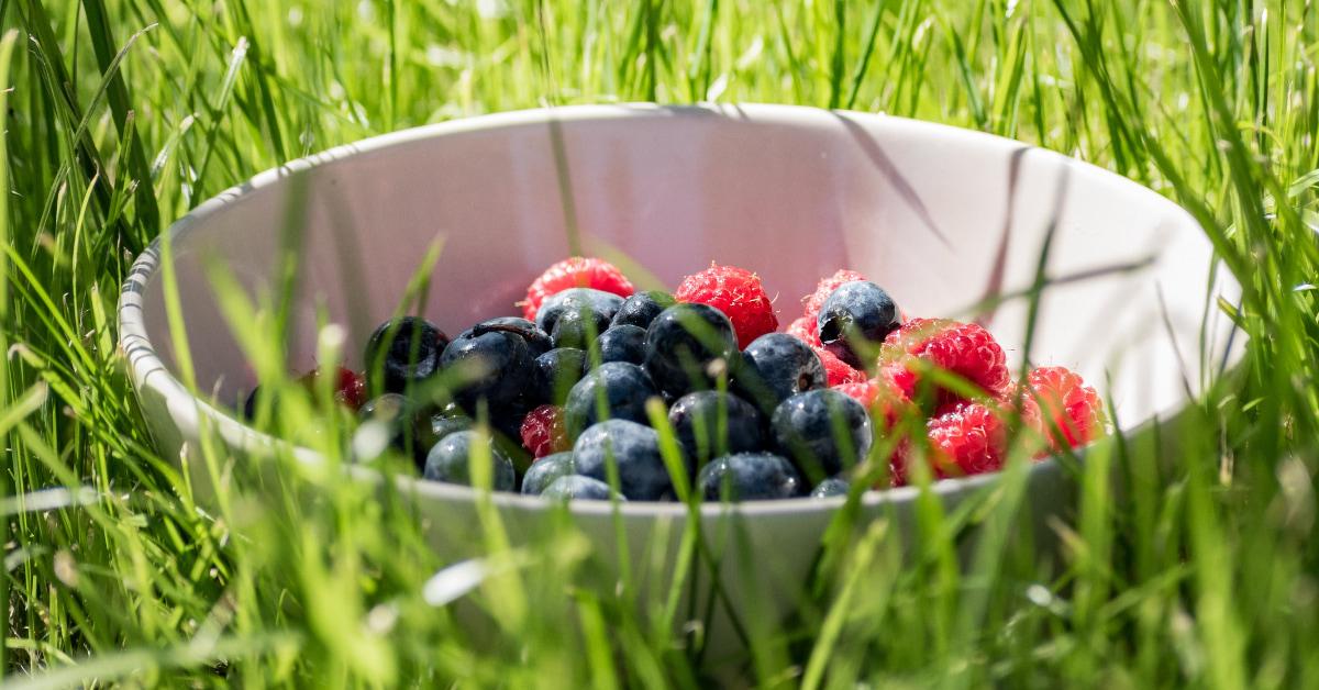 護眼食物吃對6大類!DHA抗氧化太重要、在家工作多吃「蛋黃」 ,因為葉黃素竟高出蔬菜3倍-5