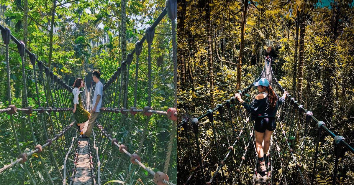 雲林打卡5大秘境快收藏!泰國叢林、神秘峽谷、全台最大寺廟只在這裡看得到-0