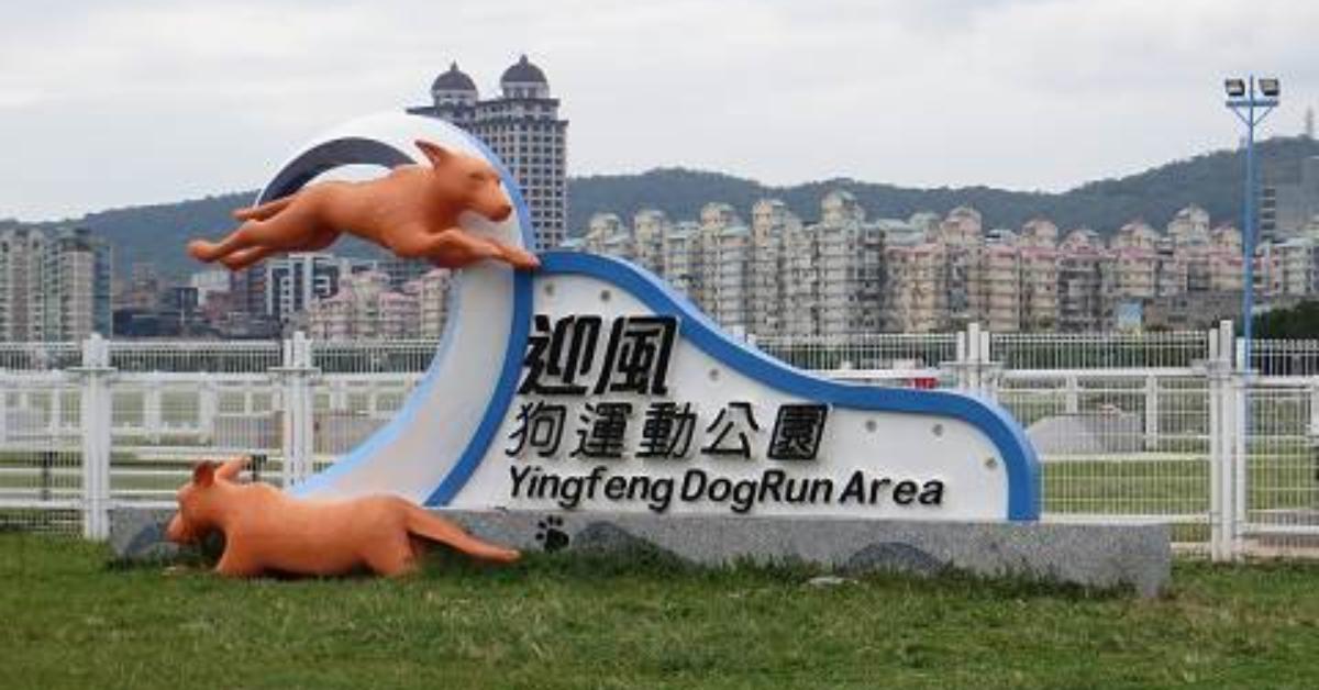 台北遛狗景点推荐Top5,超巨大草坪尽情跑跳,带着毛小孩度过悠闲的假日吧!