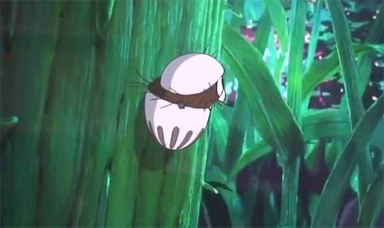 毛毛蟲波羅