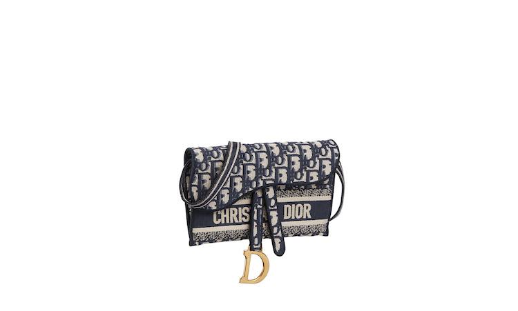 Dior馬鞍包賣到缺貨再升級!這15個延伸款馬鞍包,讓你出門不撞包!-5