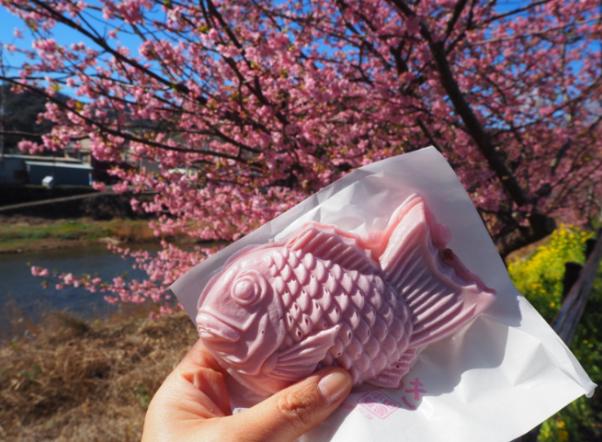 日本賞櫻限定 讓理智斷線的櫻花美食