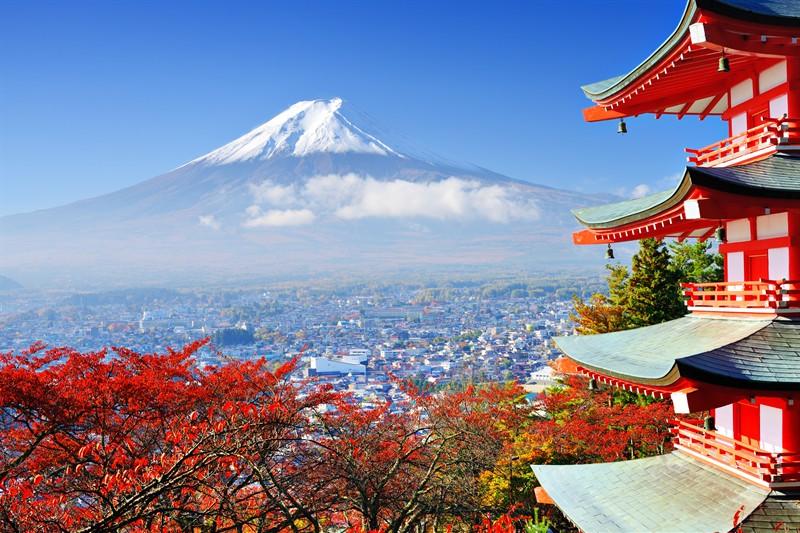 澳門荷官、日本動畫師在做什麼?帶你一窺海外神秘職業